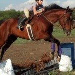 Purina.Horse .Third .Place  150x150 Photo Contest Winners
