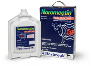 Noromectin full 300x219 Noromectin Pour On for Cattle