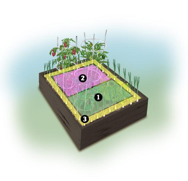 4x4 grillin garden zones Garden Ideas: Grilling Garden