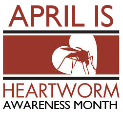 HeartwormAwareness April Is Heartworm Awareness Month