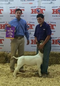 thiele alvarado HOT fair champion goat 210x300 Grand Champion Lamb at H.O.T Fair and Rodeo