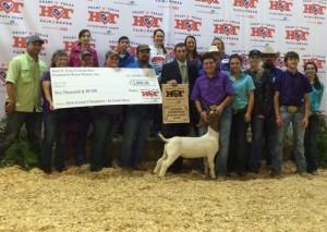 thiele alvarado hot fair grand champion goat 2 300x213 Grand Champion Lamb at H.O.T Fair and Rodeo