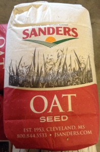 oats seed 197x300 Now is the Time: Ryegrass and Oats