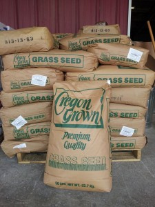 ryegrass seed 225x300 Now is the Time: Ryegrass and Oats