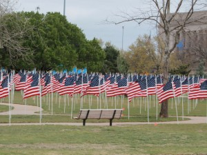 flags for memorial day 300x225 Memorial Day :: May 28 :: Open