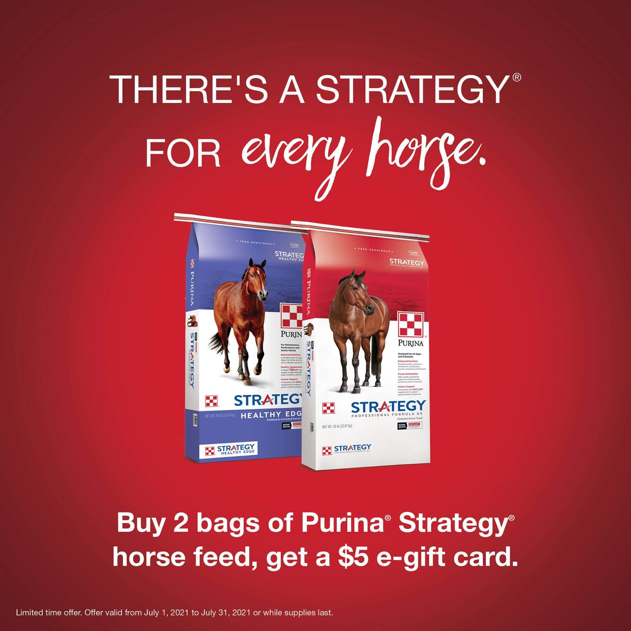 strategy healthy edge july promo purina horse feed