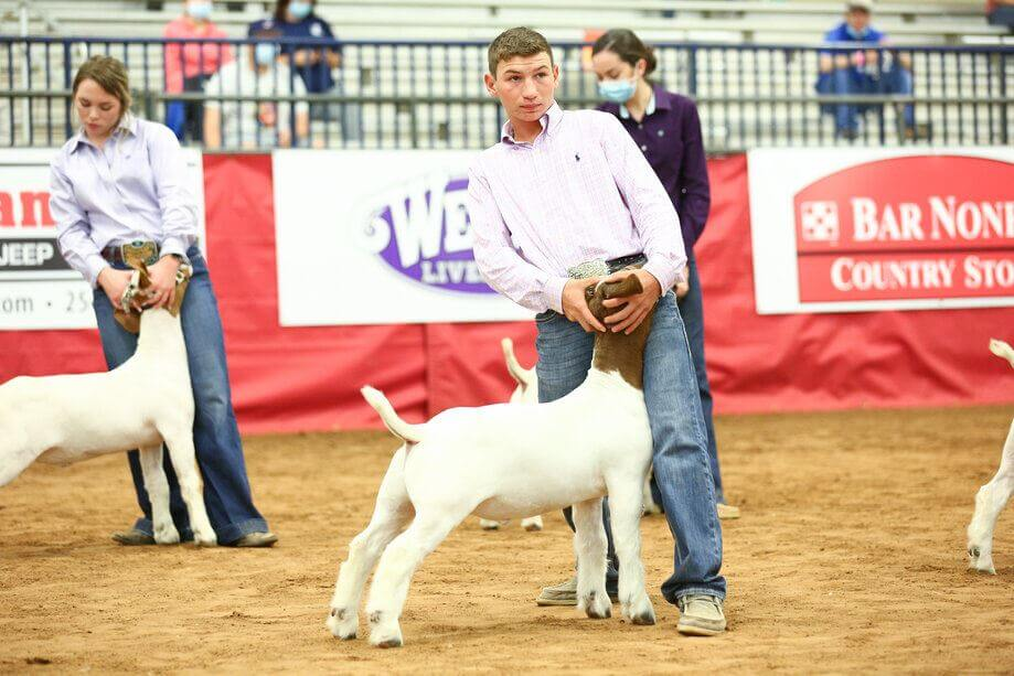hot livestock show and rodeo